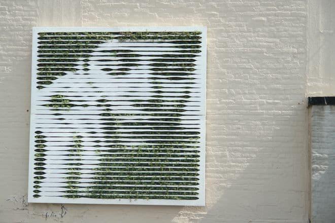 Grafiti green ou grafiti ecológico