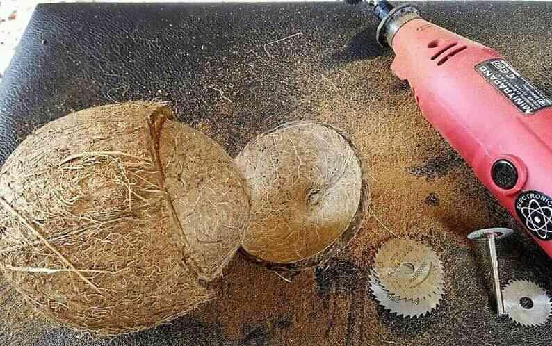 caqueira de quenga de coco